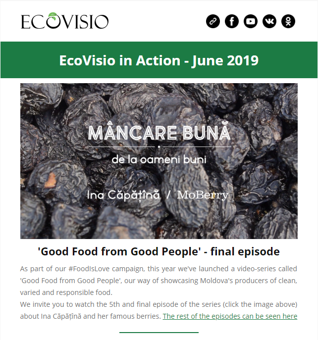 Newsletter EN June 2019