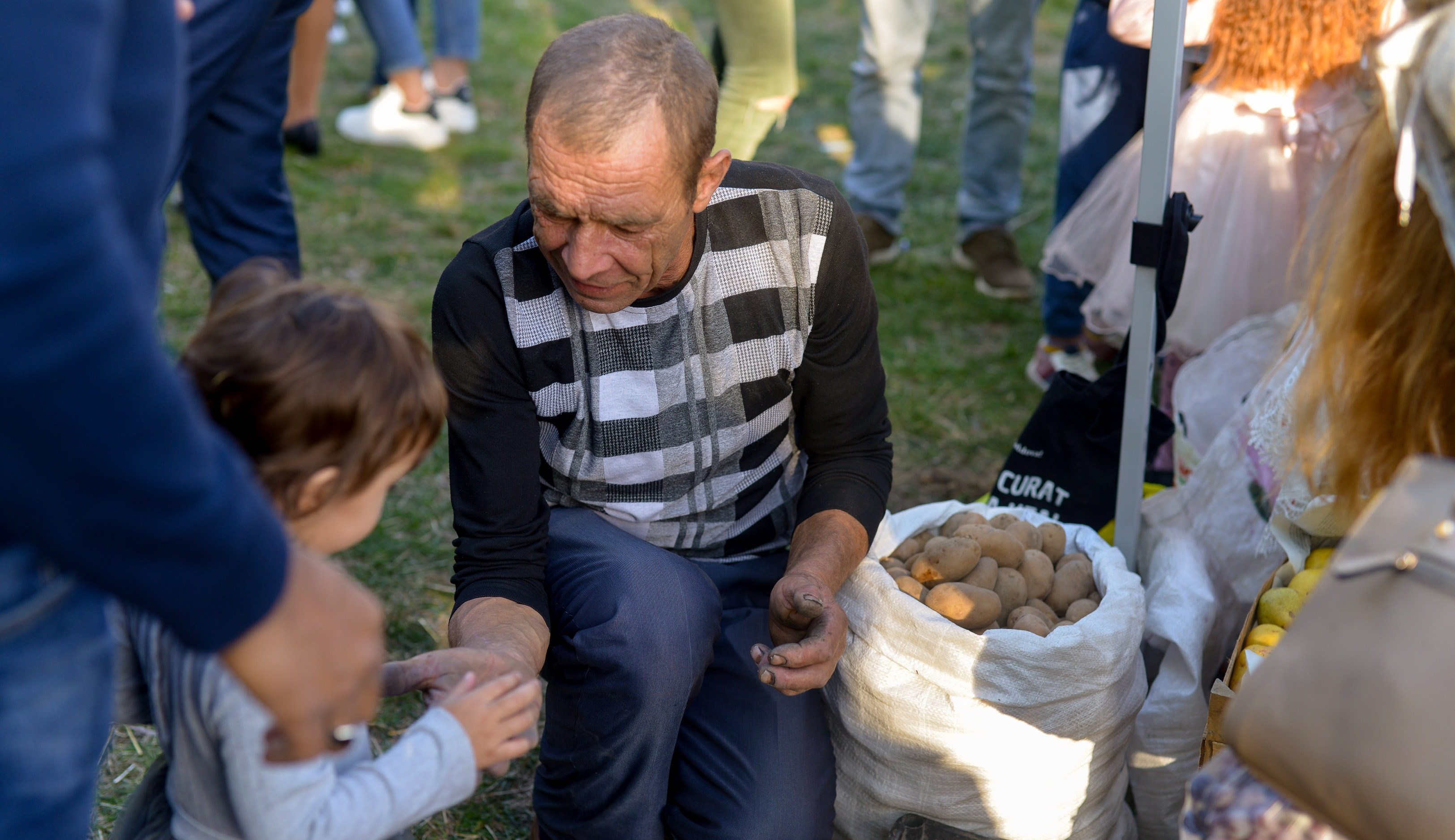 Webpage cover Toamna Cartofilor