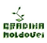logo Gradina Moldovei