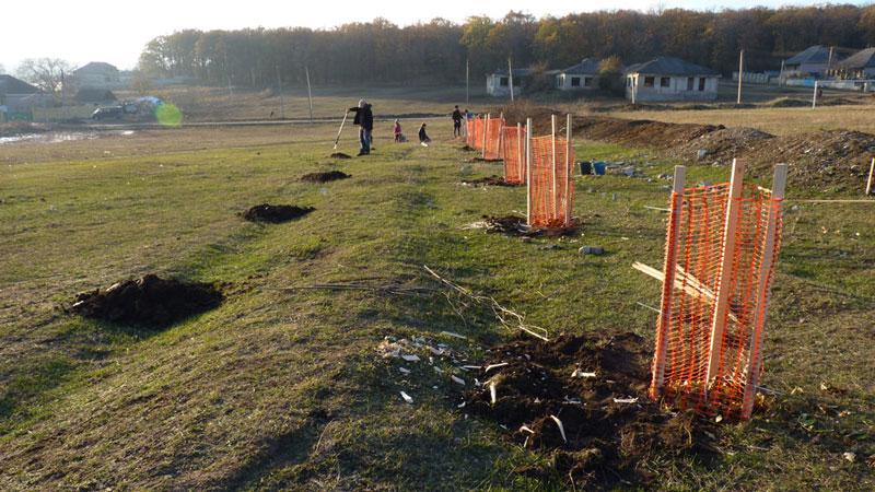 Eco Training Center Planting poplars November 2016 1