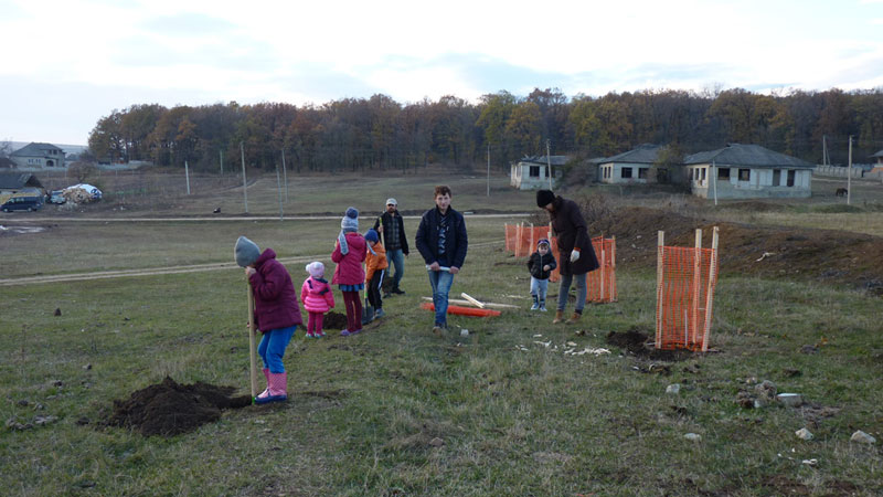 Eco Training Center Planting poplars November 2016 2