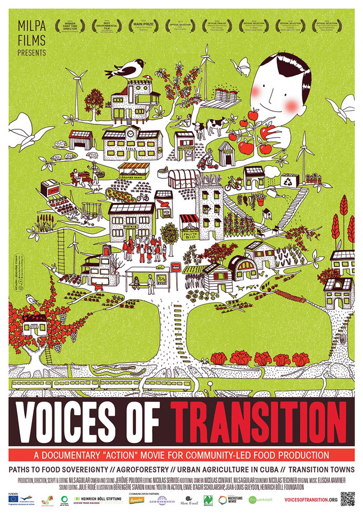 banner Voices of Transition