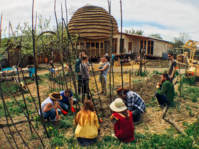 Eco Training Center organic gardening workshop